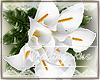 Rus: lillies bouquet