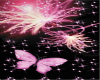 Pink Butterfly Canopy