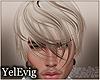 [Y] Rex blonde H M