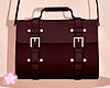 🌟 Cross Bag|R