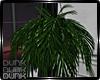 lDl GreyZone Plant ll