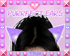 Purrfect | Purple Ears