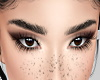 Isabella Female Eyebrows