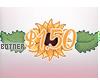 Botner | 3750CR Sticker