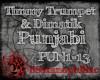 Timmy Trumpet- Punjabi