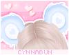 🌠 Bearycute Sky