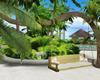 :3 Tree Bench & Pose