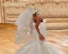 C-Wedding Veil