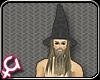 [GB] Gandalf Hat/Hair