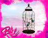Boho birds 🐦
