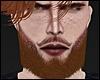 Beard Ginger! Mesh Head