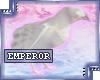 {e.e} (Right) White Crow