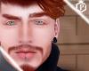 IPI Ginger + Eyebrows