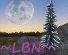~LBN~ Snowy Tree