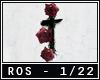 Roses Rmix