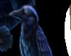 Jewels Raven Dress