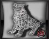 [JAX] ETERNAL SNO CAT
