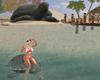 NC - Praia da Tartaruga
