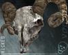 ¤ Ram Skull