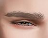 Eyebrows Light Blond