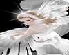 Angel Luna Bundle