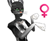 Feline Female Derivable