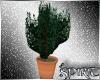 *S* Overlook Planter