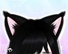 N' Black Cat Ears