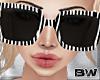Black Zebra Sunglasses Q