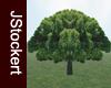 JS Tree #01