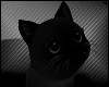 Shoulder Kitty Black