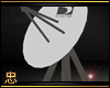 忠 Satellite