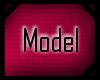  A  Model Sticker