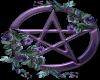 Purple pentagram Roses