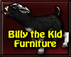 ~R Billy Kid Furniture