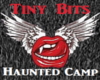 Tiny Bits-Haunted Camp