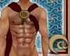 Torcadino Warrior Sash