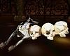 Skull Heads +Pose