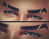 Rau| Eyebrow