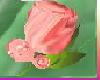 [TGUU] ROSE PIN Peach