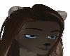 dark brown wolf {KDR}