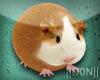 Hamsters AVATAR !! TINY