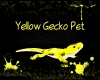 Yellow Gecko Pet