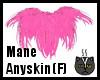 Anyskin Mane (F)