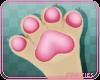 🍊 Cest | Paws