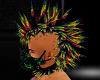 RainBow Rave Hawk