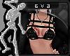 Eva l Xiri l Dani