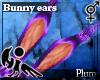 [Hie] Plum bunny ears