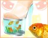 ~R~ Fish heels !