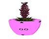 ~N~ Derivable Plant